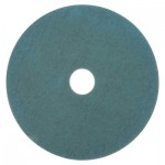 3M Abrasive Burnish Pad