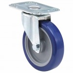 E.R. Wagner 2F9804B25000100 Light-Medium Duty Casters