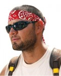 Ergodyne 12317 Chill-Its 6705 Evaporative Cooling Hook and Loop Bandanas