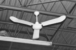 TPI Corp. IHR-56R Industrial Ceiling Fans