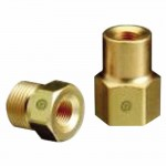 Western Enterprises CO-2-1 Female NPT Outlet Adaptors for Manifold Pipelines